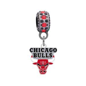 chicago-bulls-small