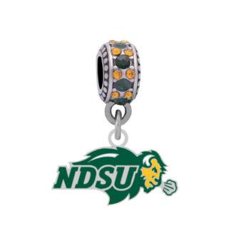 north-dakota-state-silv-logo