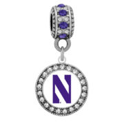 northwestern-white-background